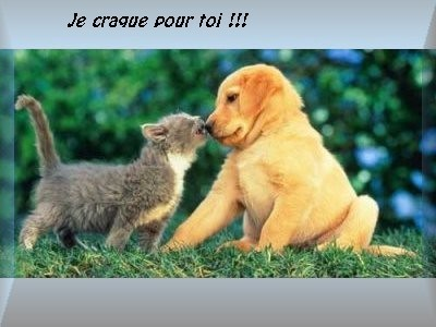 images tendresse