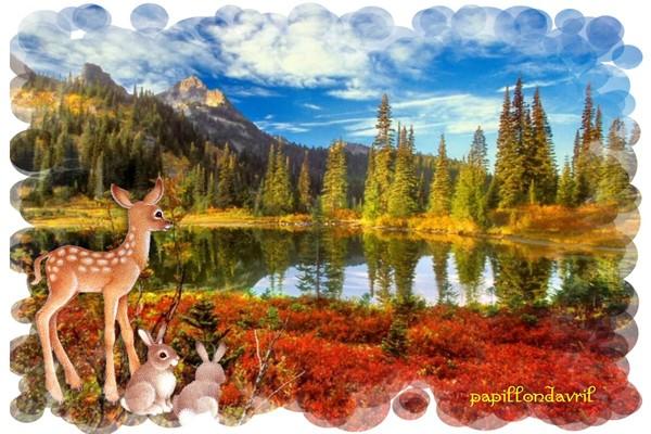 Fond ecran automne - Date de l automne ...
