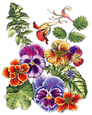Résultat d'images pour Gifs tubes fleurs et petite fille