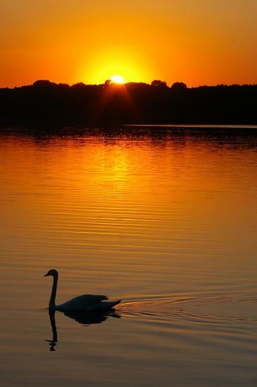 autres-lacs-et-rivieres-berlin-allemagne-1296475598-1234574.jpg